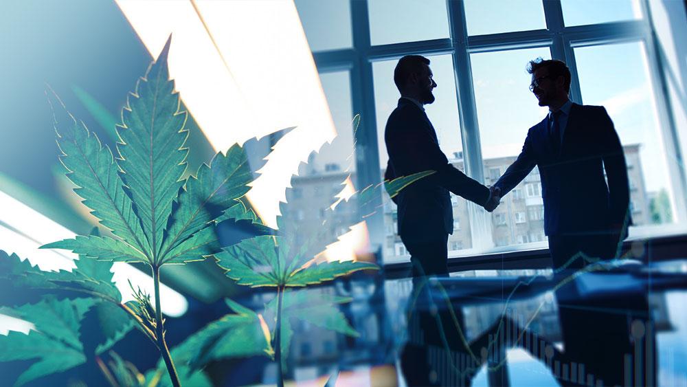 Aurora-Cannabis-Enwave-Agreement