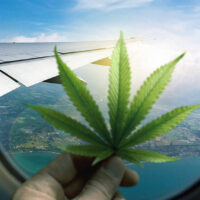 TSA now allows hemp-derived CBD, FDA-approved cannabis med on flights