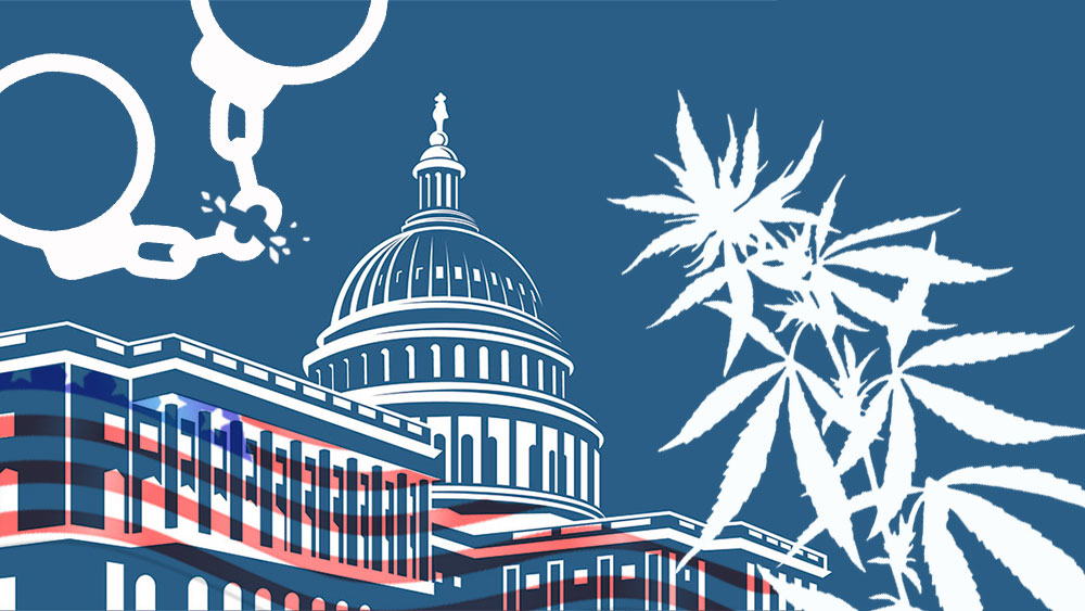 federal rescheduling of cannabis