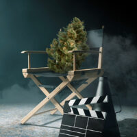 Top 10 Weed Documentary Shows Worth Watching