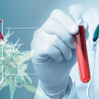 Don't worry about cannabis drug testing if you're looking for a job in Nevada