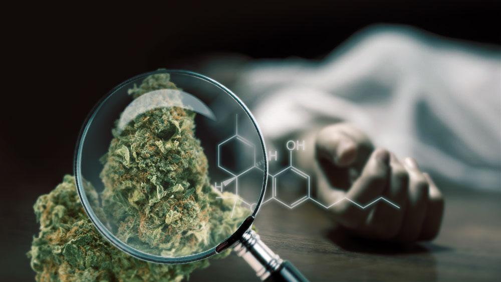 THC-overdose-presumed