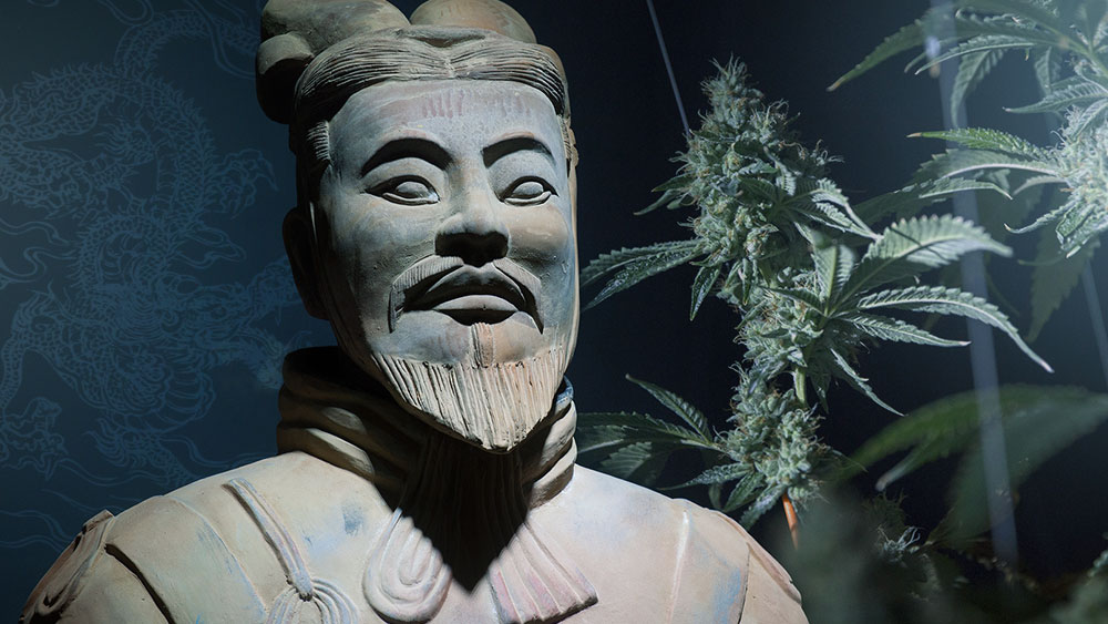 Earliest-psychoactive-use-China