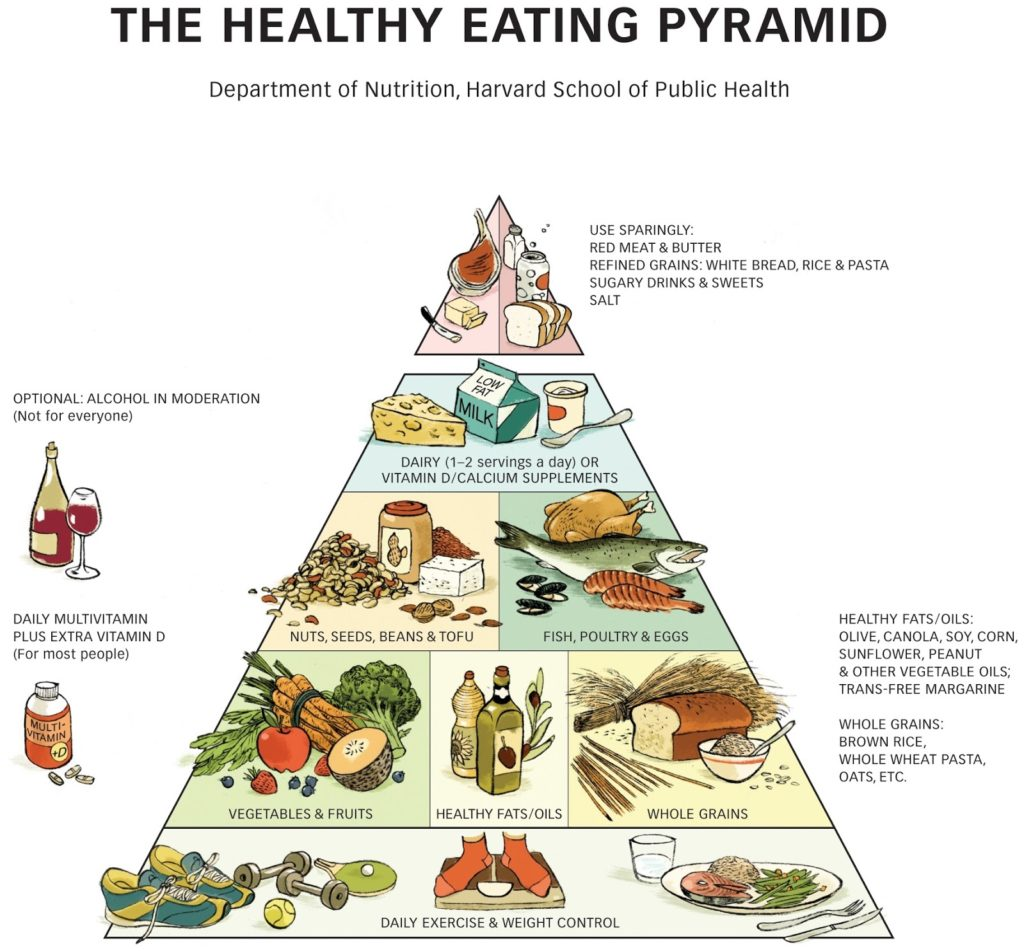 food pyramid harvard