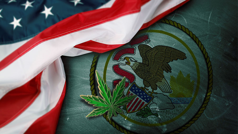 illinois recreational marijuana legalization