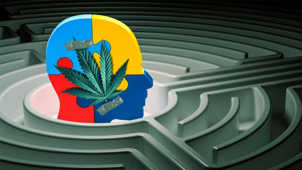 marijuana for aspergers