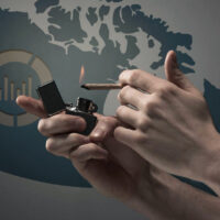 Why Is Black Market Weed Still Doing Well in Canada?