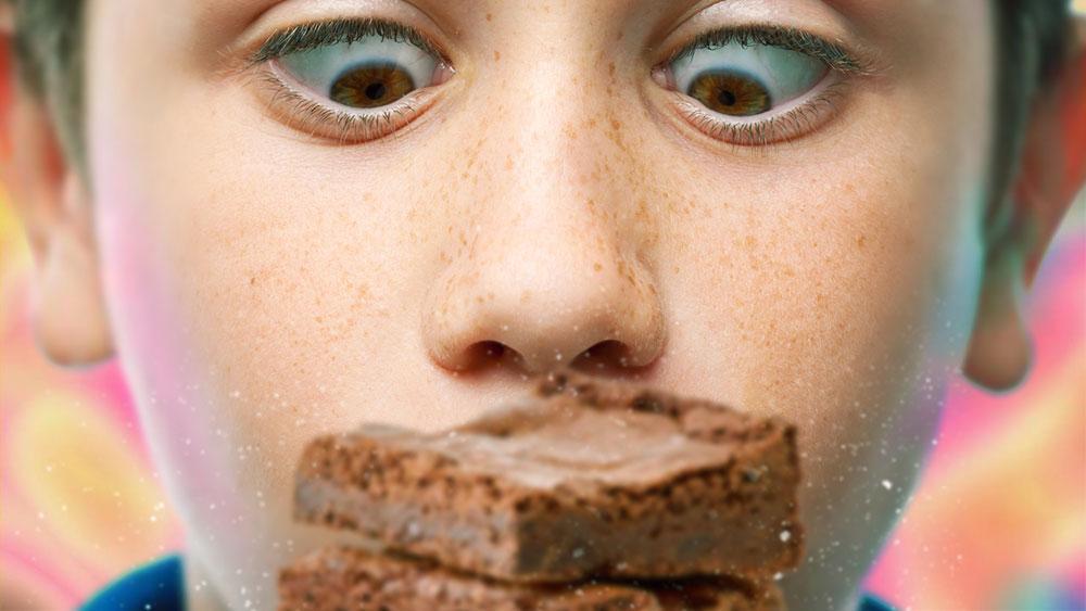 Cannabis-brownie-hallucination