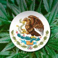Mexico inches closer to marijuana legalization