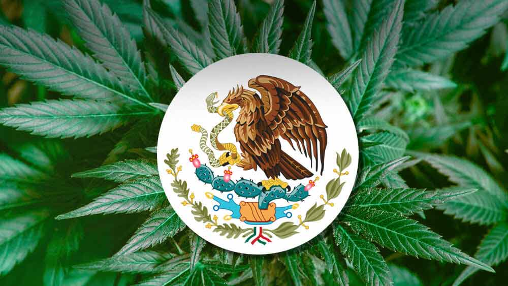 Mexico-cannabis-legalization