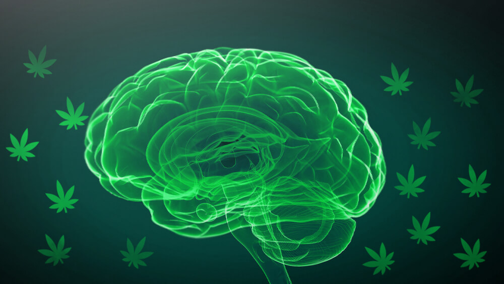 Cannabis-for-autism-study