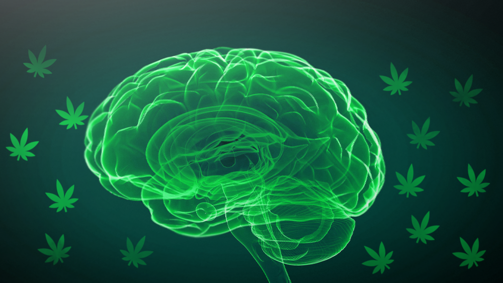 Cannabis-for-autism