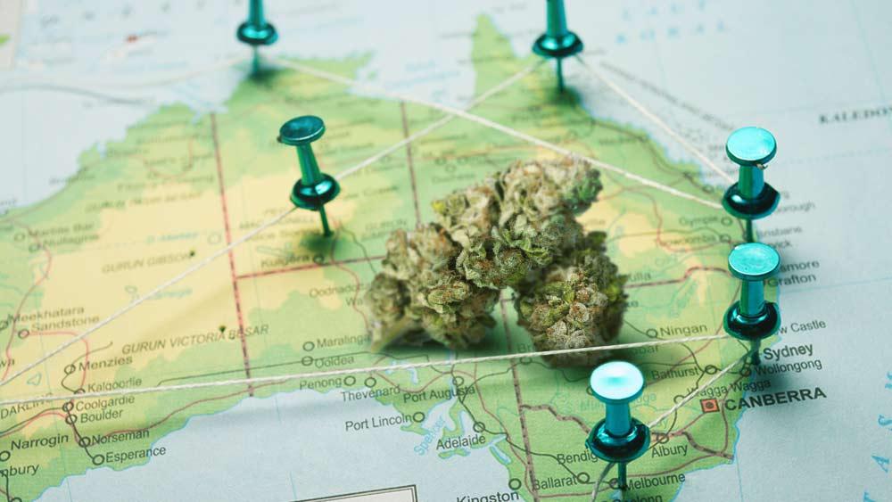 Canberra-cannabis-legalization