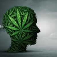 Cannabis Induced Psychosis – Symptoms, Causes, and How to Treat It