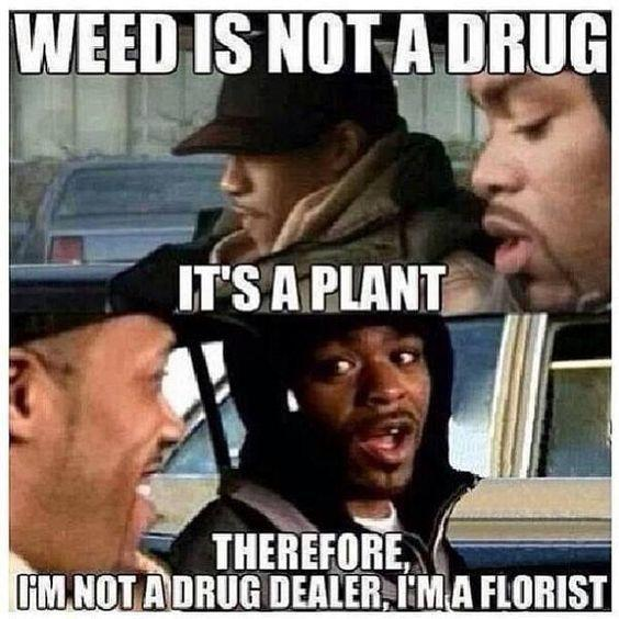 Weed is not a drug it's a plant therefore I am a florist
