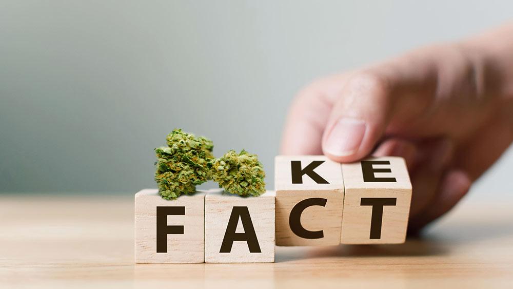 Weed myths