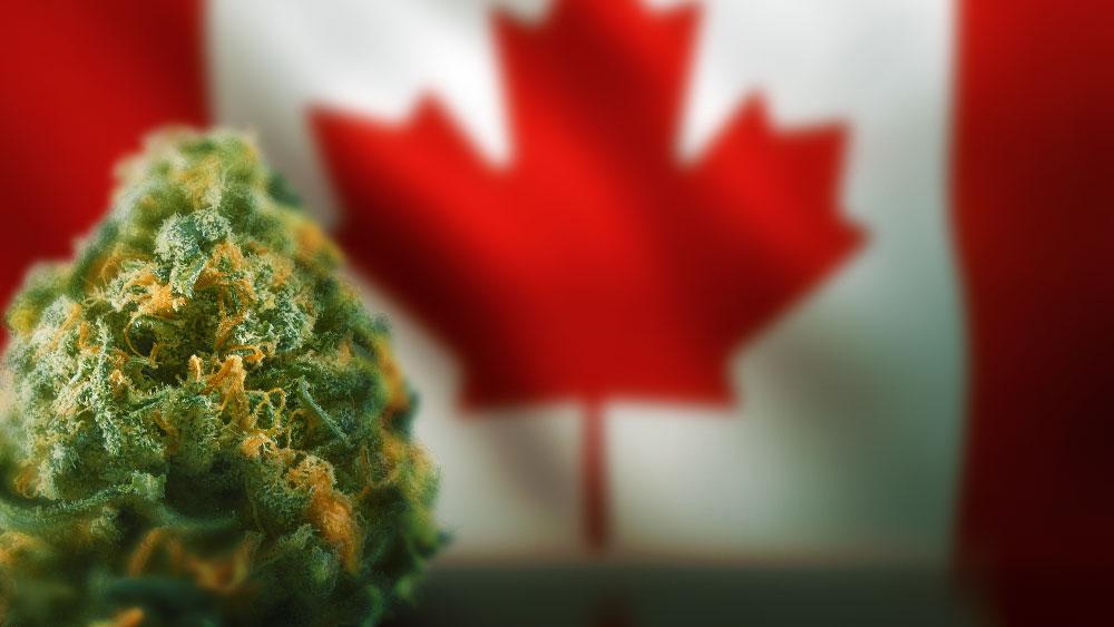 Canada-legalization-year
