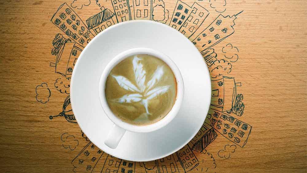 marijuana cafe LA
