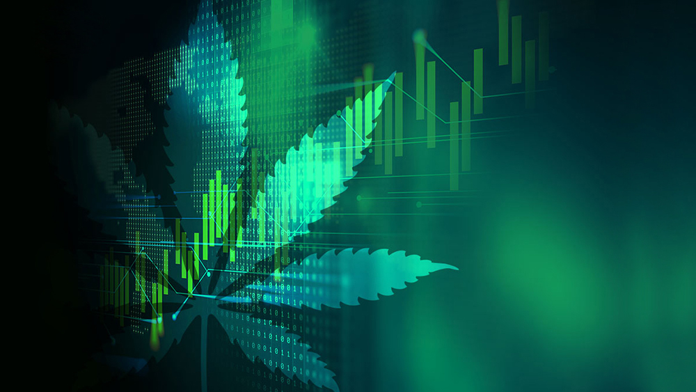 Hexo-Aphria-cannabis-stocks