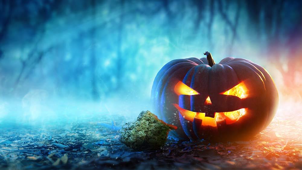 Halloween spooky weed names