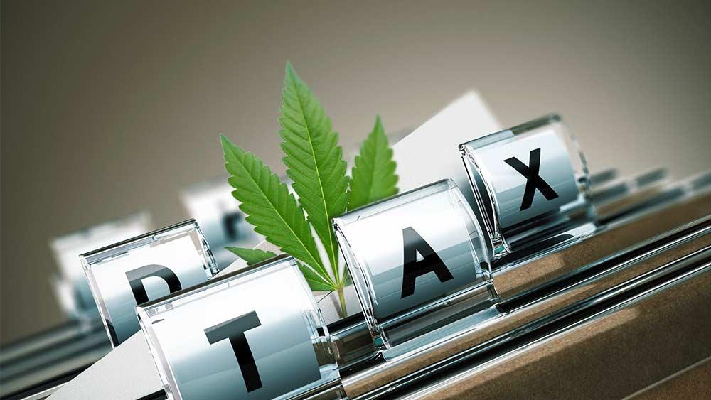 Bernie-Sanders-marijuana-tax
