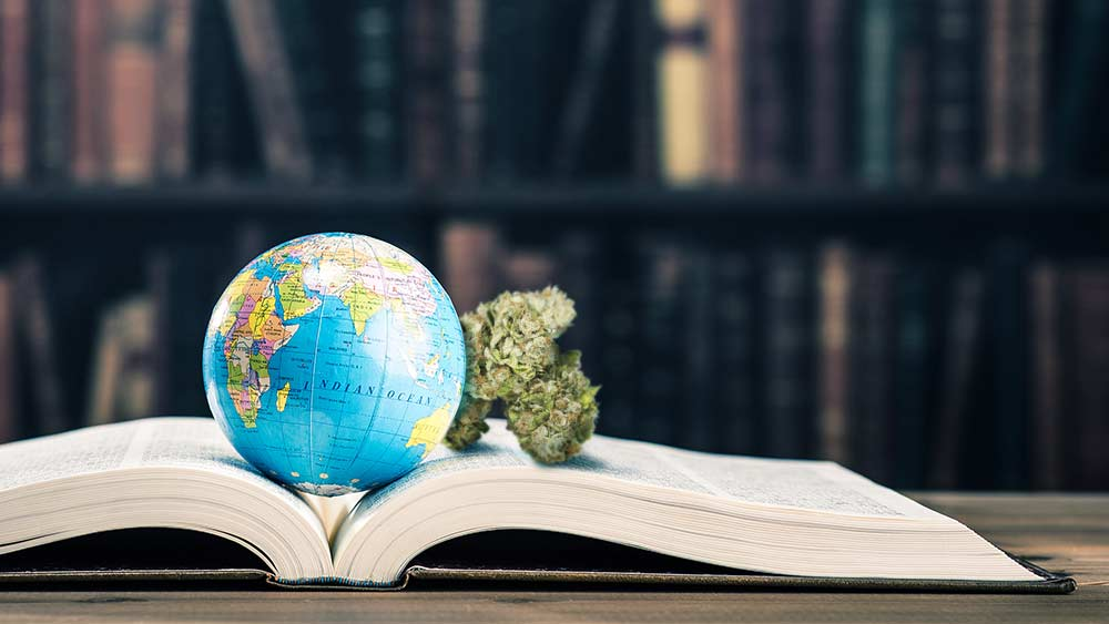 Marijuana origins