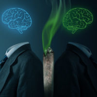 Jekyll and Hyde of medical cannabis: what do two new studies reveal