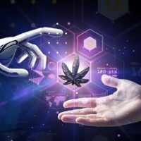 The Present and Future of Cannabis Research