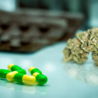 Tramadol and Weed: Can They Be Used Together?