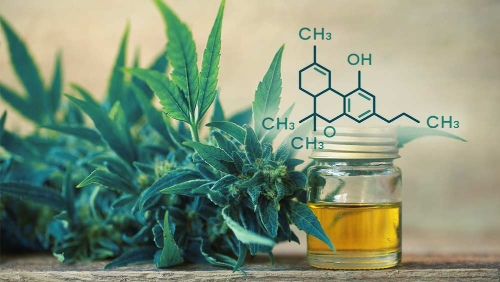 How to Make THC Oil for Medical and Recreational Purposes
