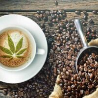 How Caffeine and Weed Interact