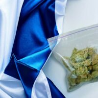 Israel all set to export medical marijuana in valuable new business