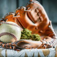 MLB minor league will remove ban on cannabis: reports