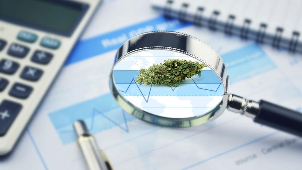 cannabis heart study