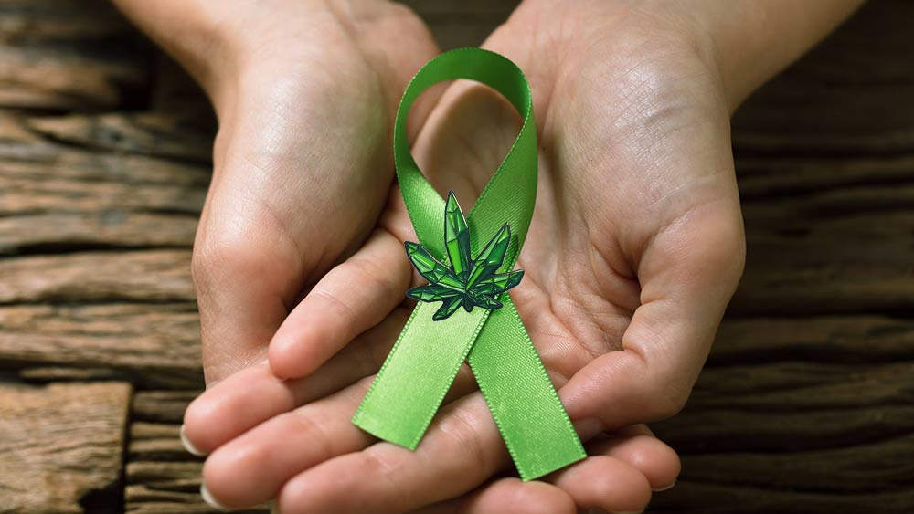 Hands holding a green cancer ribbon with a cannabis leaf