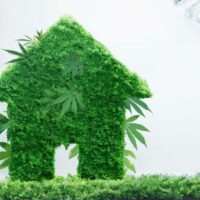 Hemp Houses: A More Sustainable Way to Build and a Healthier Way to Live