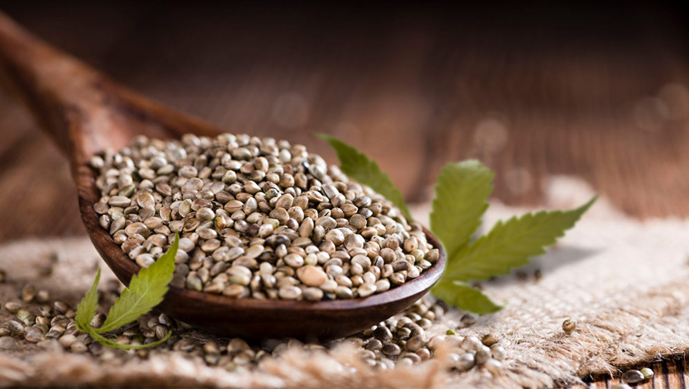 THC-free-seeds