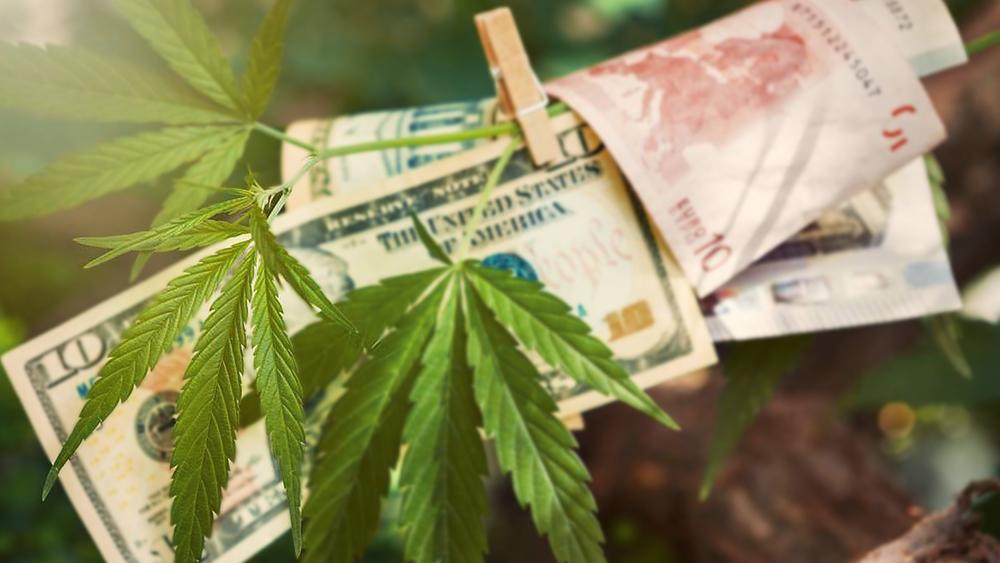 Davos-cannabis-convention