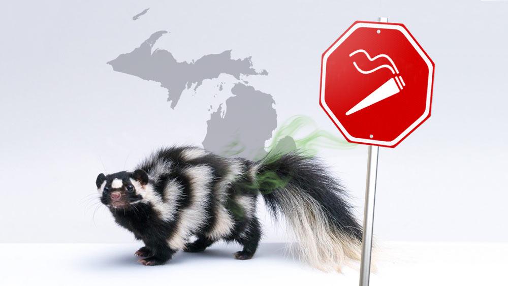Michigan-marijuana-smell