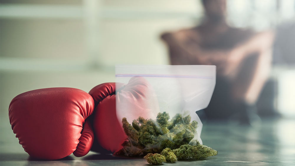 Boxing-Weed-Event
