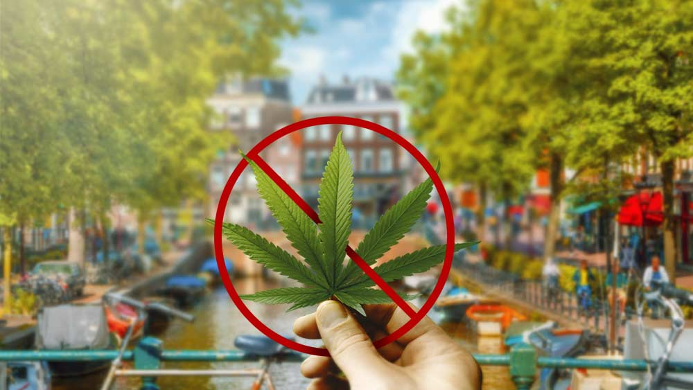 Amsterdam-banning-weed