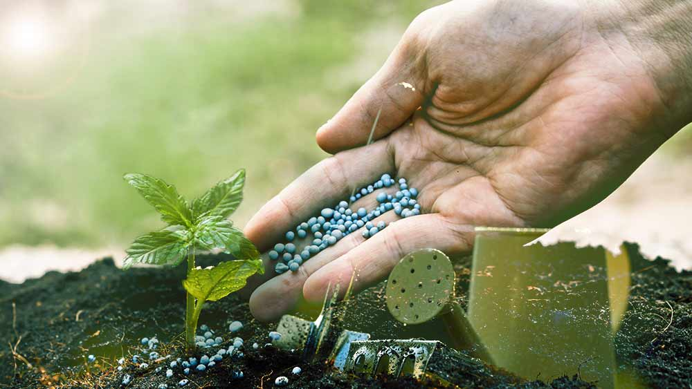 Nutrients for growing weed