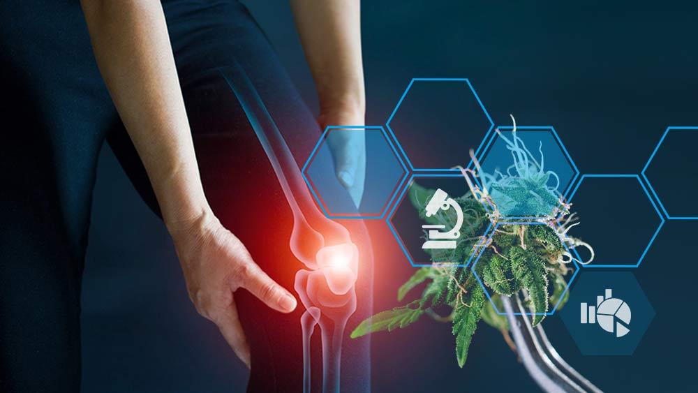Cannabinoids and inflammation