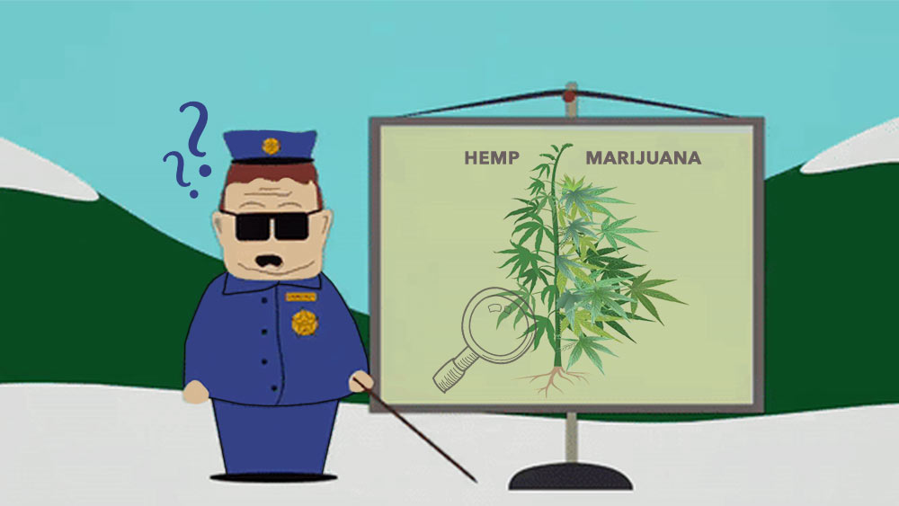 Hemp-vs-Marijuana-device
