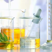 CBD Extraction Methods – Are They Competing or Completing One Another?