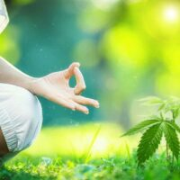 COLUMN: Ganja Yoga Stretched More Than Just My Body