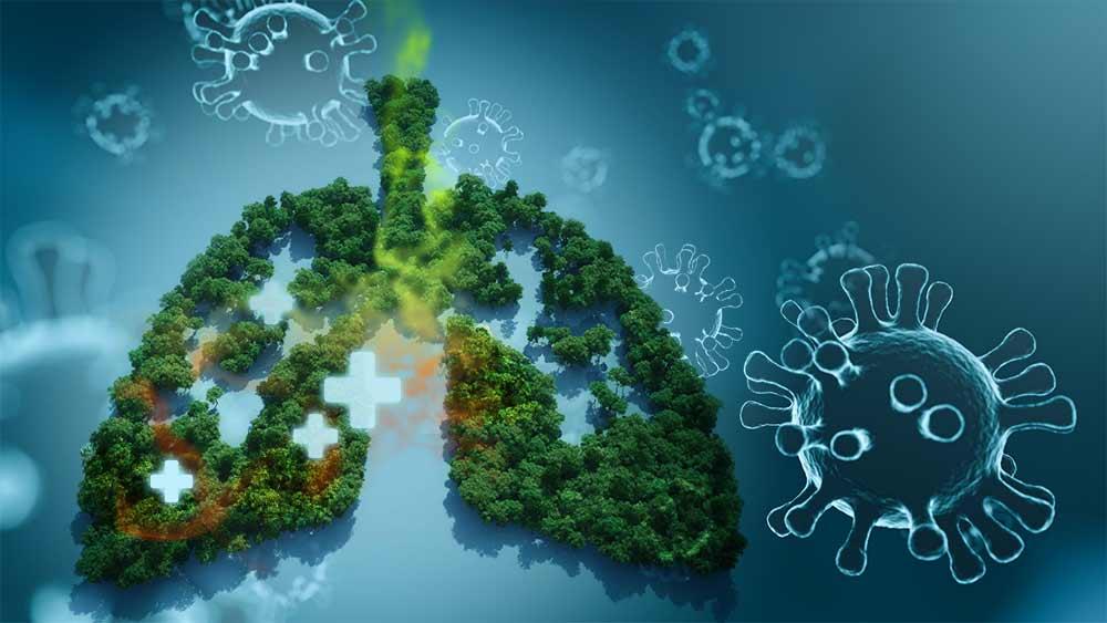 Cannabis-Blocks-Coronavirus
