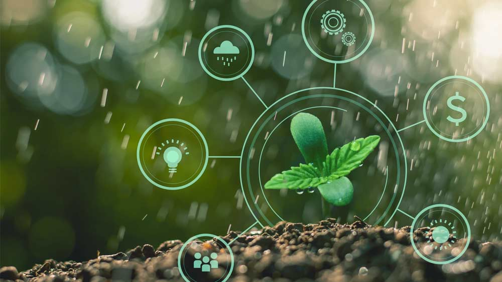 Cannabis-Seed-to-Sale-Tracking