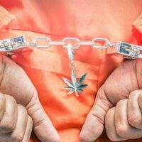 COVID Behind Bars: The Story of a Nonviolent Marijuana Offender