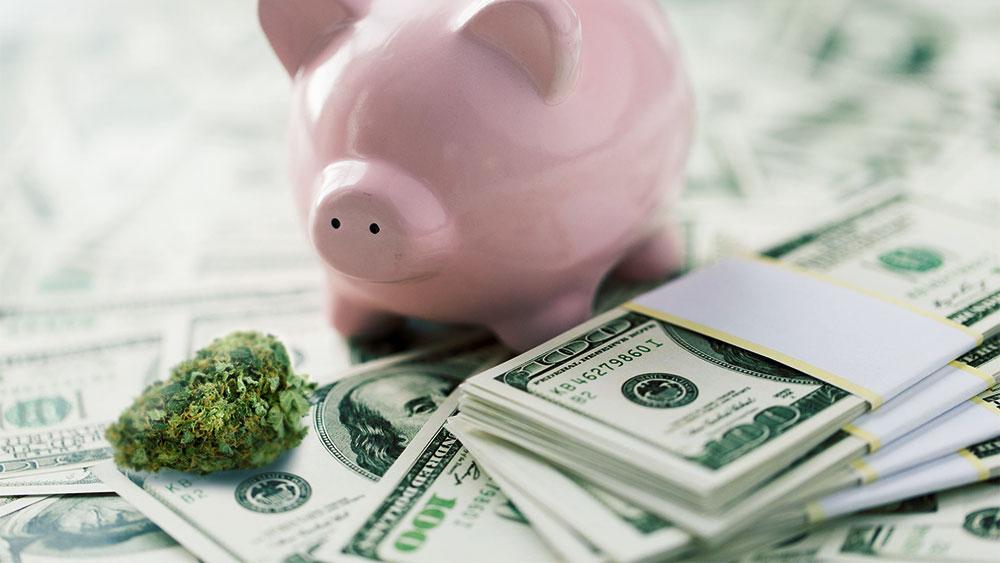 Weed, money and piggybank